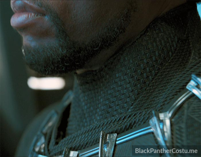 T Challa The Black Panther Black Panther Costume Info